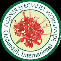 logo Oudendijk International.png