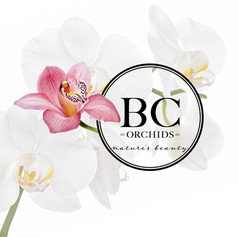 BC Orchids