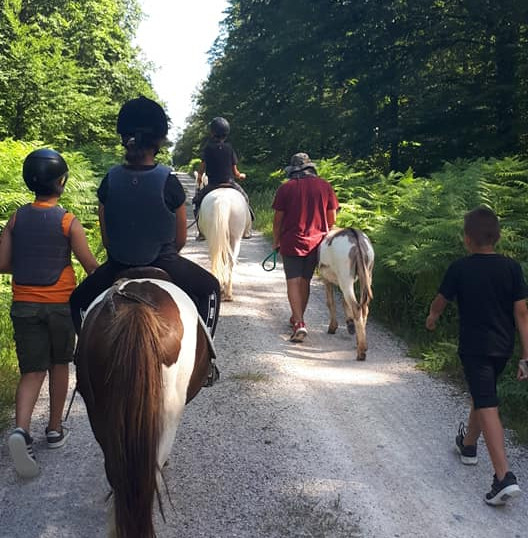 séjour equitation été 2020 (7).jpg