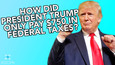 A Fascinating Behind-the-Scenes Look at Trump's Tax Returns