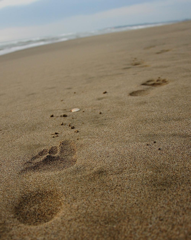barefoot, natural movement