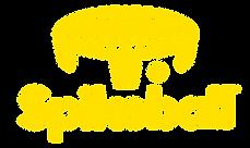 Spikeball Net Full Logo Yellow     02.pn