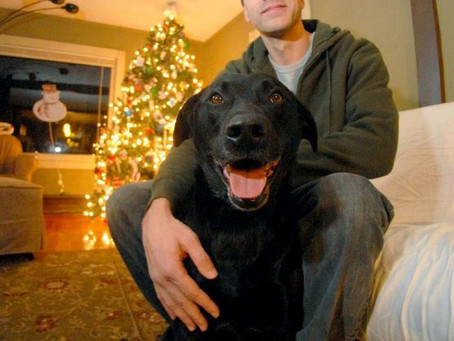 Norwich Bulletin: Dayville duo help reunite family with dog