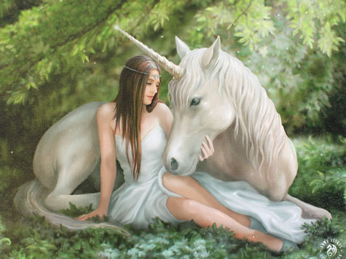 Pure Heart canvas Plaque by Anne Stokes.