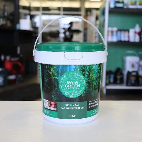 Gaia Green Kelp Meal 1-0-2