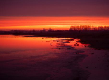 Winterse zonsopkomsten in de uiterwaarden...