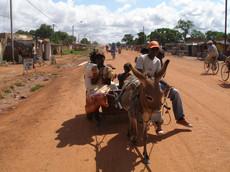 Sortie en charette à Laongo (2007)