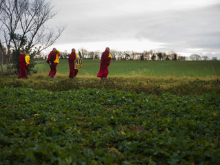 Dalai Lama's Gyuto Monks in Woodsetts
