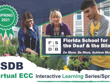 Virtual ECC Interactive Learning Series