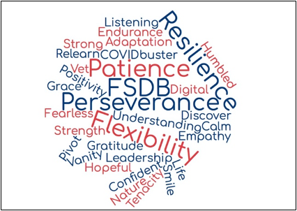 FSDB wordcloud image with the words in red and blue. Some of the larger words are FSDB, Patience, Resilience, Perseverance, Flexibility and Humbled.