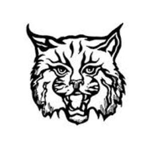 Taylor Pierson Wildcats Logo
