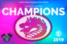 FSDB 2019 Mason-Dixon Volleyball Champions