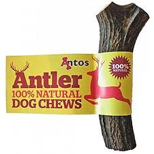 antler chew.jpg