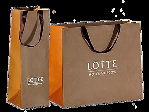 Бумажный пакет с логотипом LOTTE.png