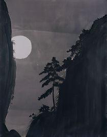 月松,明胶卤化银Gelatin silver print,97x127cm,20