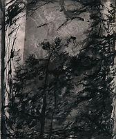 树-30x40cm-2013.jpg