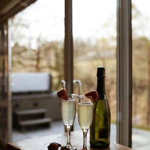 Close-up of wine and two glasses with screen doors and hot tub in background
