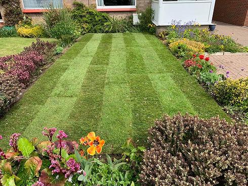 Freshly turfed garden.jpg
