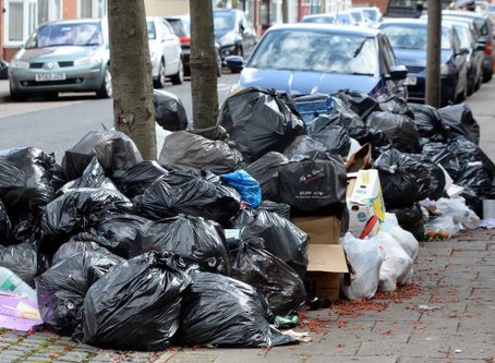 The Telegraph: Monthly bin collections hailed a 'success' despite residents rats and stenches