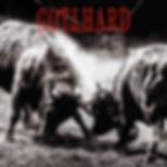 album13 - gotthard.JPG