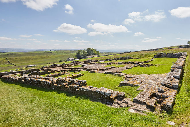 HWall_Housesteads_B6318_2019_21.jpg