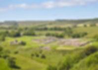HWall_Vindolanda_B6318_2019_19.jpg