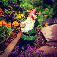 Gnome salute