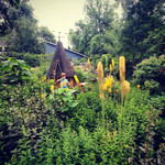 Foxtail lilles and gnome house