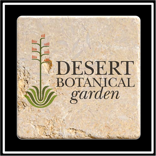ST-25 - Faux Travertine Printed Square Absorbent Coaster