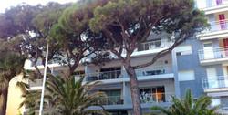 location Cannes Pointe Croisette Palm Beach front de mer