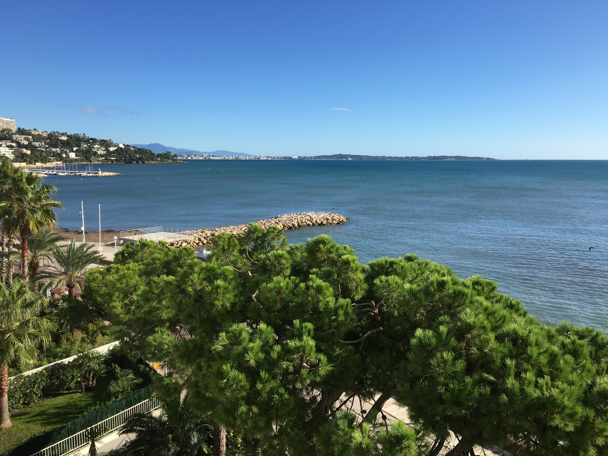cannes Location Palm Beach