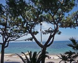Location Cannes front de mer