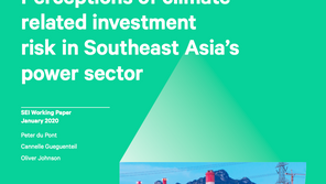 Still Business as Usual for Coal Projects in Southeast Asia?