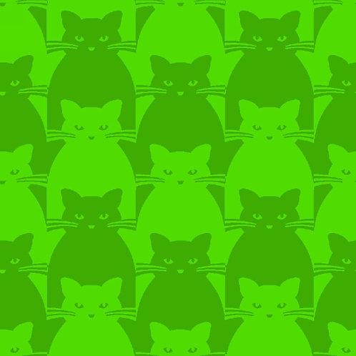 Kitty Kitty Green