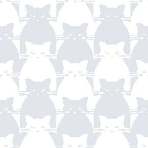 Kitty Kitty Grey on White
