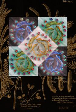 Tamarind Necklace