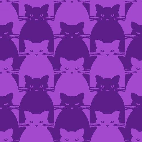 Kitty Kitty Purple