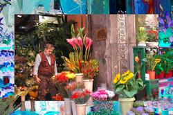 FlowerVendor,Quadrilatero