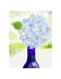 "Hydrangea 'Nikko Blue"""