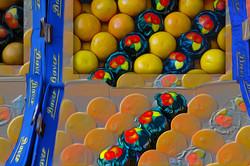 Grapefruits of Brugge