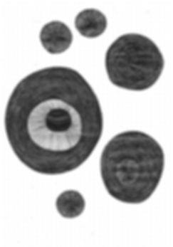 Escanear 3.jpeg