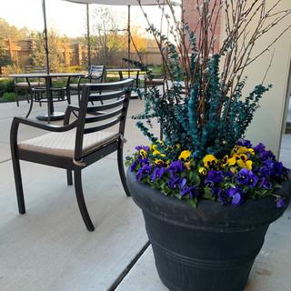 Spring Flower Pots