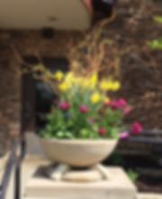 Spring Pot.png