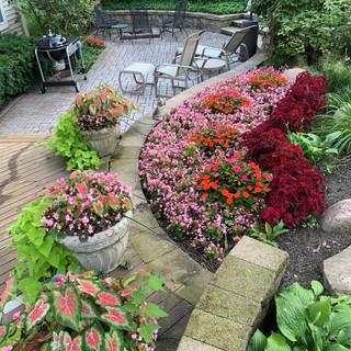 Summer Flower Pots