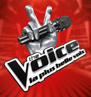 the-voice-la-plus-belle-voix-1.jpg
