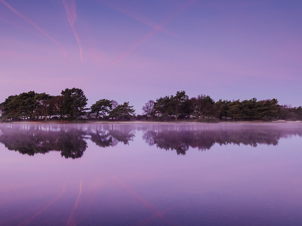 Shades of purple during a winter sunrise at Hatchet Pond, the New Forest (DSC_2871)