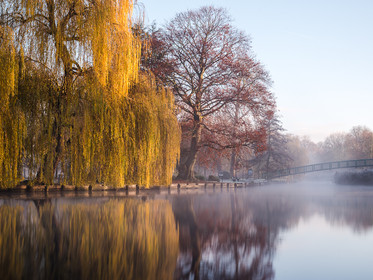 A misty and frosty morning over the water at Beddington Park, London (SWP_2897)