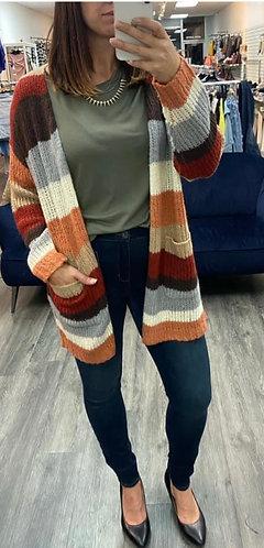 Striped Charlie b cardigan