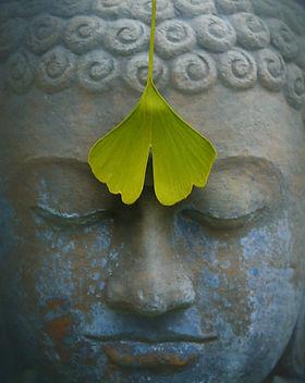 buddha-2728793_1280.jpg