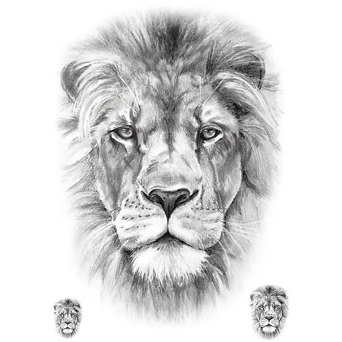 Ace's Pick 03 Lion